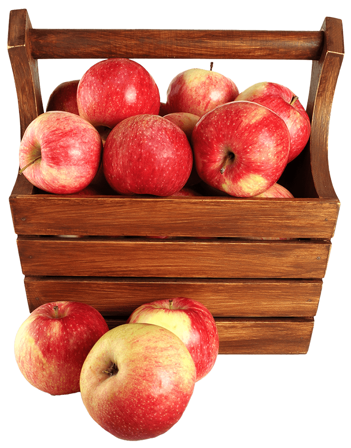 apples maças