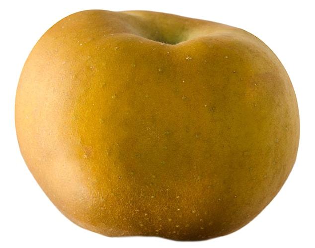 reineta maça reinette apple